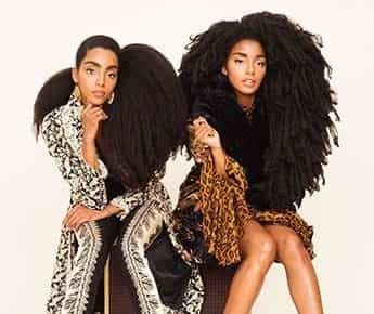 Types de cheveux afro